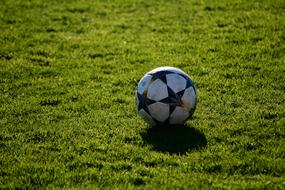 soccer ball with black stars on the field