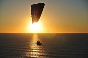 magnificent Paragliding Ocean Sunset