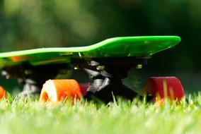 Skateboard with orange color Wheels on green Grass