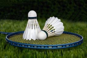 two Badminton shuttlecocks on racket