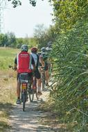 a group of cyclists riding a rural path
