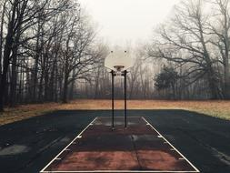 Basketball Court and trees