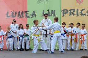 Karate Martial Arts Kids exercise