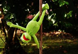 Pole Dance Kermit Funny Soft frog
