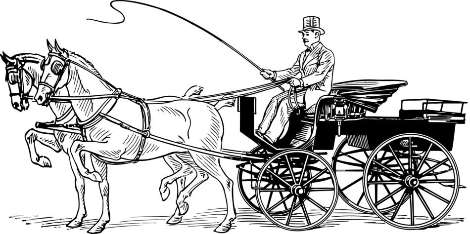 drawn horse carriage and a coachman