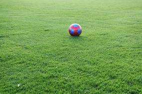 red-blue ball on green field