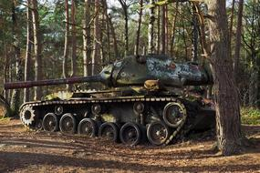 panzer in the forest