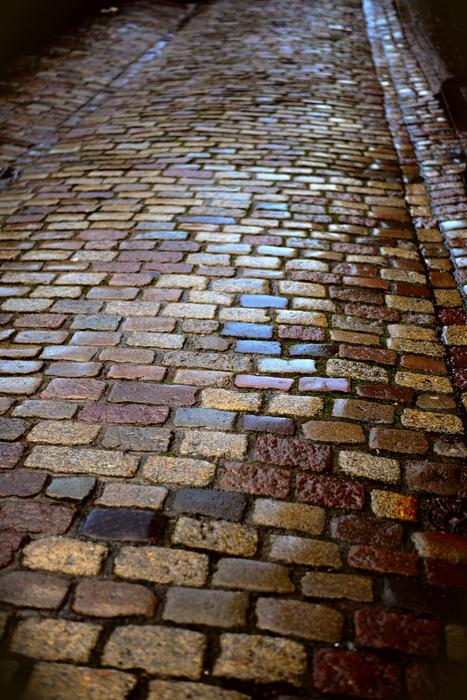 wet paving stones in the alley
