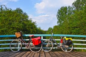 two bicycles are parked on a wooden bridge in a park