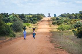 African Women Walking on the path among colorful plants