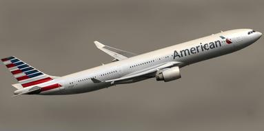 American Airline model