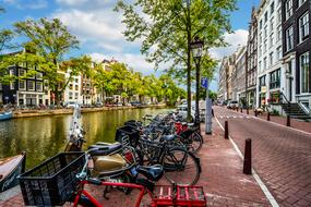wonderful Amsterdam Street
