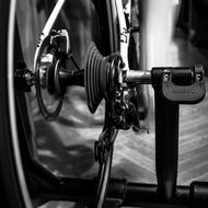 Bicycle Wheels black and white
