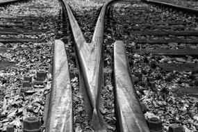 Railroad Tracks Fork Soft Black and white
