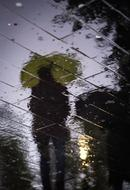 person beneath umbrella reflection on wet road