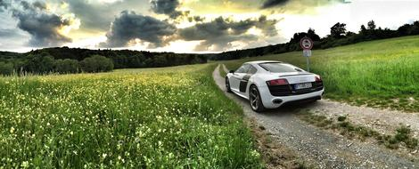 Audi Sports Car forest