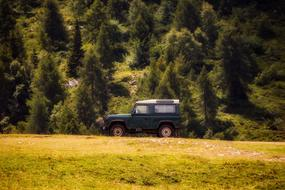 forest Landscape Jeep