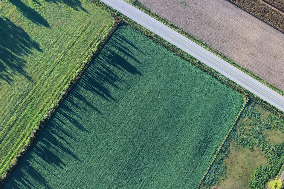 aerial view of scenic Cropland at summer