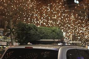 Christmas Tree Car stars