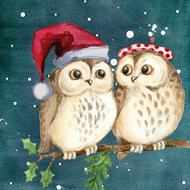merry christmas, two cartoon owls perched branch
