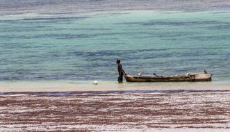 fisherman on the Diani Beach, Kenya