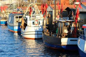 Pictures of boats at the port in Greifswald, Germany