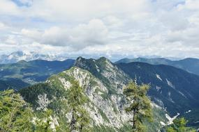 photo of evergreens on the slopes of the mountains