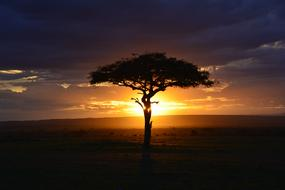 ravishing Africa Sunset
