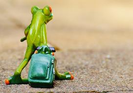 Cute green frog figure with the green luggage