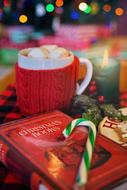 Christmas mug of hot chocolate with marshmallows and a book on the table