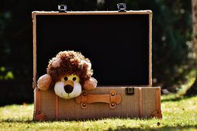 toy Lion Luggage