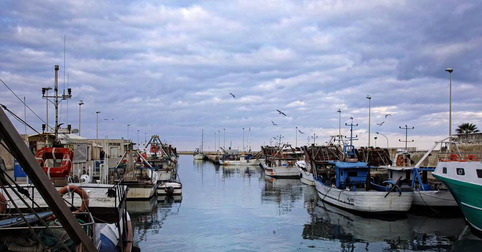 harbor with boats in Manfredonia