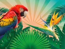 beautiful colorful parrot on a tropical background