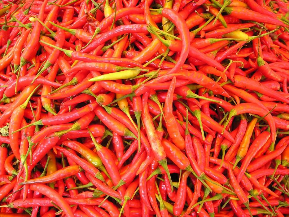 Chilli Pepper red Spices