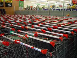 Shopping Cart Trolleys red