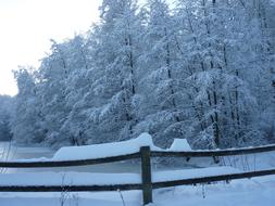 wooden fence along the winter lake