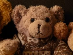 Teddy Bear Soft Fluffy toy