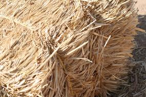 perfect Hay Bail Straw