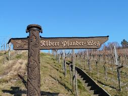 vineyard signpost
