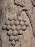 carved on a tree bunch of grapes