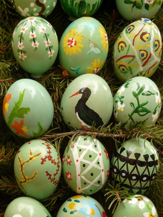 Easter Eggs on fir tree branches, background