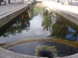 channel with clean Water, colombia, Bogota