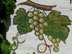 Mural Grapes drawing