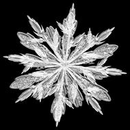 photo of a snowflake crystal