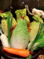 Chinese Cabbage and Carrot and Leek