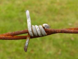 Barbed Wire Rusty iron