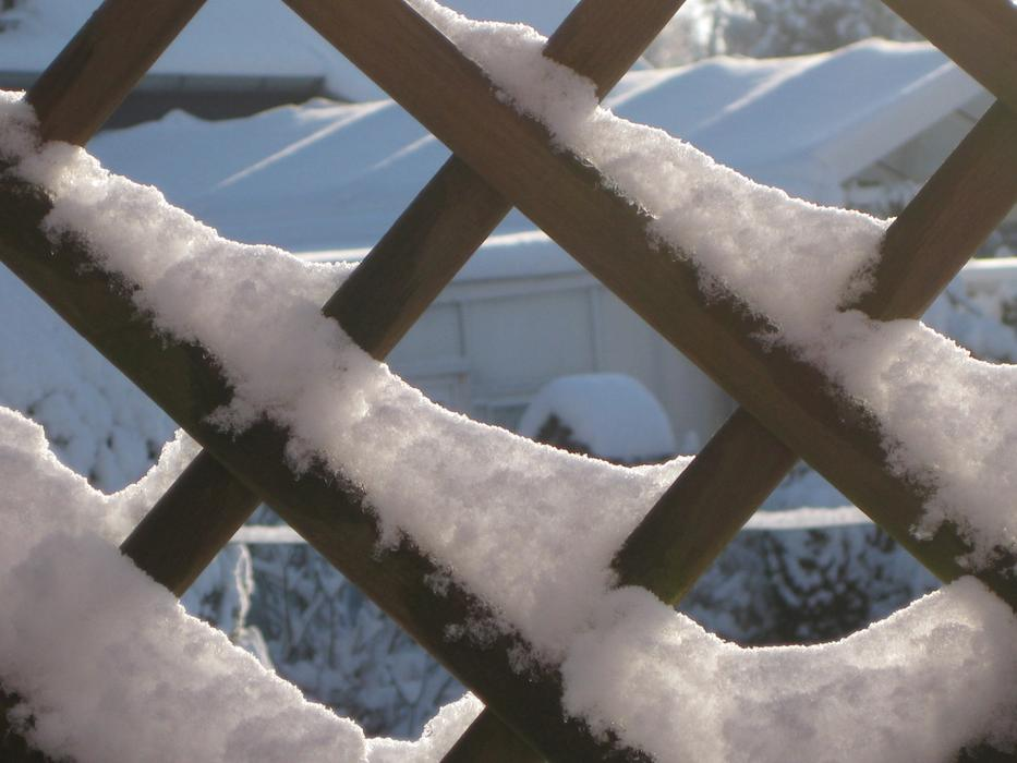 Winter Magic Frost fence