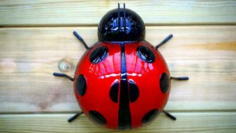Insect Red ceramic