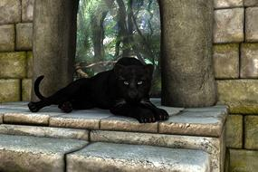 black panther lies on stone steps
