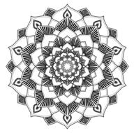 mandala lines pattern shape line drawing